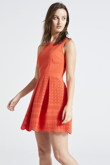 Coral Lace Scallop Edge Skater Dress